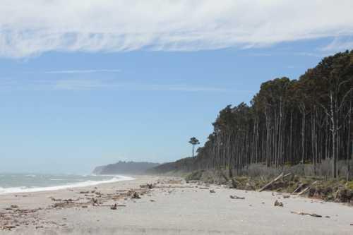 Bruce beach 2.jpeg